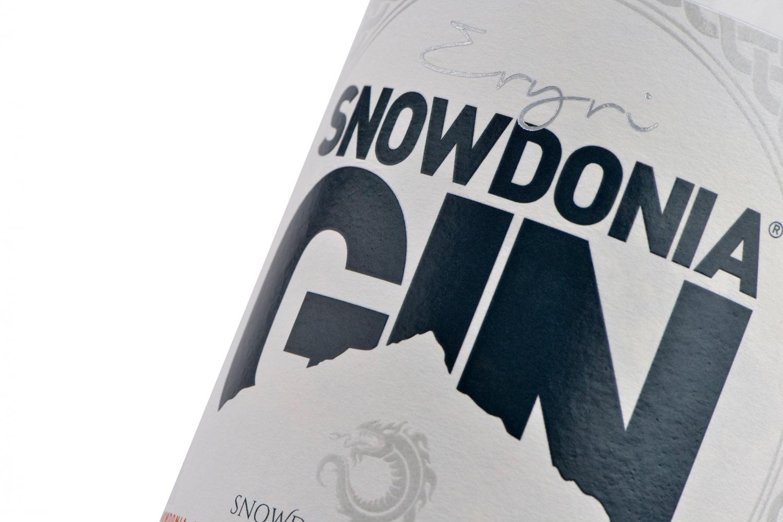 Snowdonia Gin 1