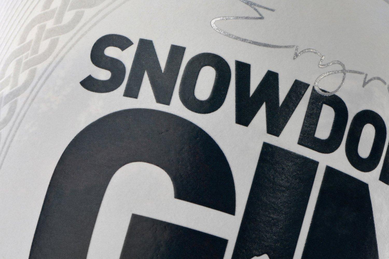 Snowdonia Gin 5